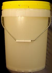 Bulk Wholesale Honey 28kg Pail